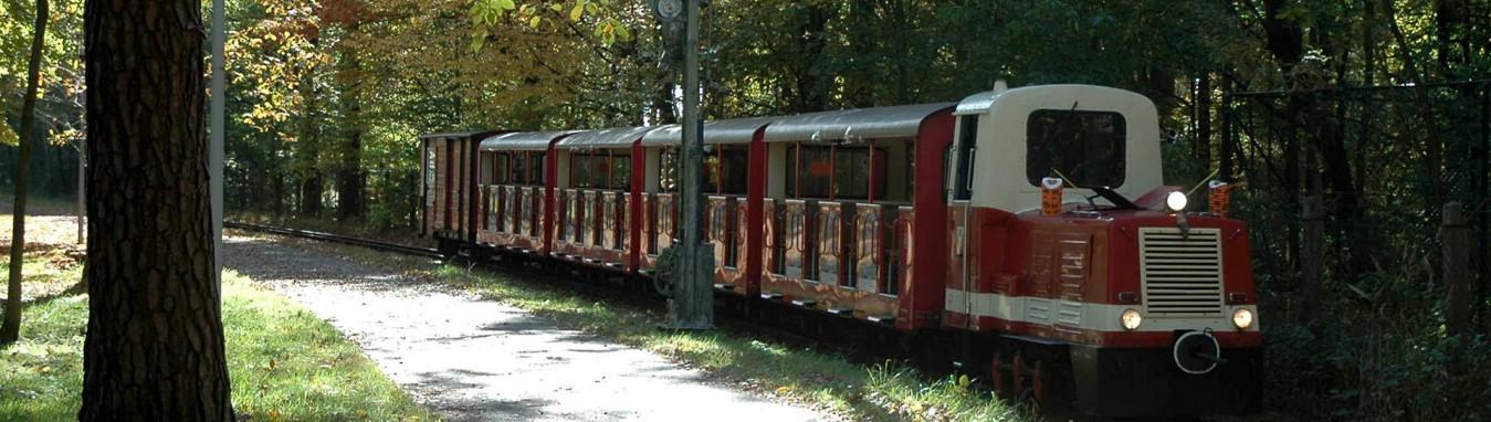 Die Pionier- und Parkeisenbahn