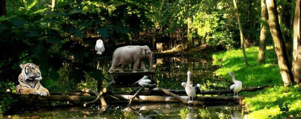Tierpark-Erlebnis Cottbus